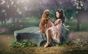 Picture mood, stone, dog, petals, girl, Asian, friends, doggie