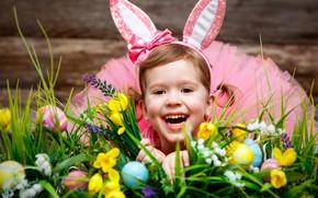Picture joy, eggs, girl, weed, Bunny