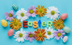 Picture Flowers, Spring, Easter, Eggs, Holiday, Chrysanthemum