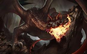 Wallpaper dragon, fantasy, fire-breathing