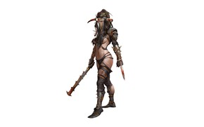 Picture girl, weapons, warrior, costume