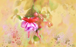 Picture flower, flowers, yellow, background, figure, graphics, treatment, light, picture, art, painting, buds, gently, drawing, strokes, …