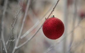 Picture holiday, toy, ball, ball, Christmas time