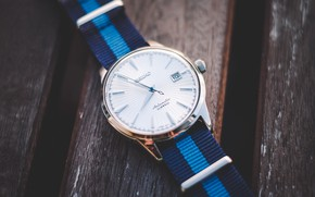 Picture style, watch, Seiko, SARB065