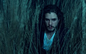 Picture grass, actor, beard, brunette, Kit Harington