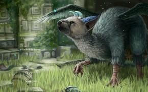 Picture grass, stones, temple, trick, the last guardian, triku