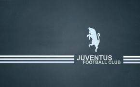 Picture Zebra, Black and white, juventus_football_club, dark blue background, Bianconer