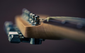 Wallpaper music, guitar, macro