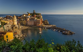 Picture harbour, Ligurian Sea, Vernazza, Liguria, Liguria, Cinque Terre, The Ligurian sea, home, Italy, Italy, branches, ...