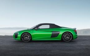 Picture car, Audi, green, Audi R8, Audi R8 Spyder, Audi R8 Spyder V10, Audi R8 Spyder …