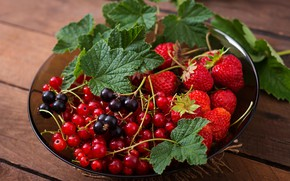 Picture leaves, berries, basket, strawberry, currants
