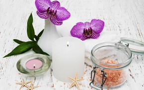 Picture flowers, candle, orchids, Spa, starfish, sea salt