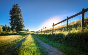 Picture summer, Germany, Germany, Bavaria, fence, Wolf arts