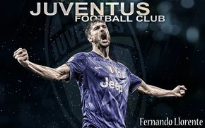 Picture passion, Juventus, Fernando Llorente, Spanish football player