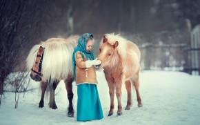 Wallpaper winter, snow, girl, pony, shawl, horses