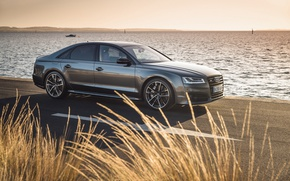 Picture audi, grass, sunset