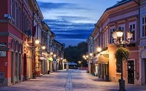 Wallpaper clouds, lights, the evening, street, lights, Novi Sad, home, trees, road, the sky, Serbia
