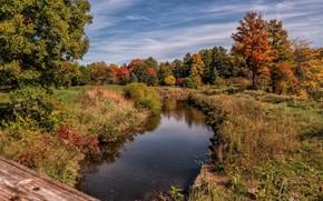 Picture autumn, landscape, nature, beauty