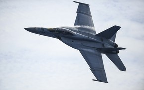 Picture Super Hornet, carrier-based fighter, FA-18F Super Hornet