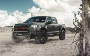 Wallpaper Ford, Raptor, F-150, AG MC, pickup