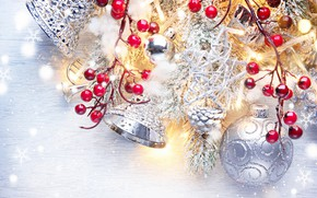 Picture berries, holiday, balls, toys, new year, beads, bells, fir-tree branches
