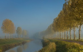 Picture morning, channel, Netherlands
