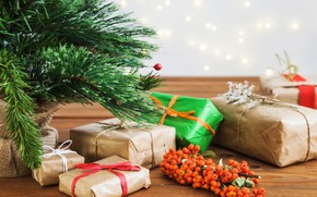 Picture holiday, tree, new year, gifts, branch berries