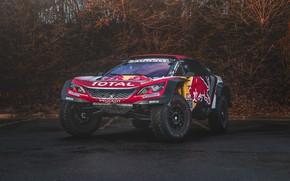 Picture Auto, Sport, Machine, Speed, Peugeot, Lights, Red Bull, Rally, Dakar, Dakar, SUV, Rally, Sport, The …