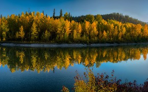 Picture autumn, forest, water, the sun, trees, mountains, reflection, river, yellow, panorama, USA, Glacier National Park