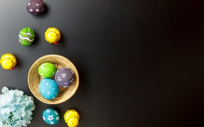 Picture flowers, eggs, spring, Easter, flowers, spring, Easter, eggs, decoration, Happy, tender