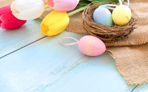 Picture holiday, eggs, spring, Easter, socket, tulips