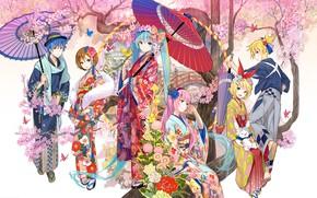 Picture anime, art, Vocaloid, Vocaloid, characters, festival