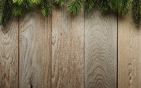 Wallpaper branches, spruce, wood, Christmas, tree, Board, background, background