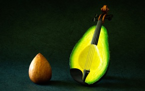 Picture fantasy, violin, strings, avocado
