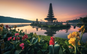 Picture water, flowers, Bali, temple, Kanna