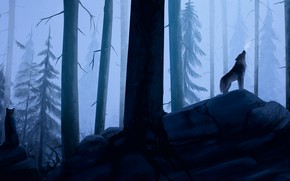Wallpaper forest, fog, morning, wolves, by wolf Lich