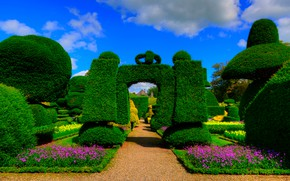 Picture flowers, garden, England, the bushes, Levens Hall, trees, Kendal, Topiary Garden, greens, alley, the sun, …