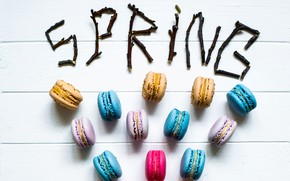 Picture branches, spring, colorful, spring, macaroon, macaron, macaroon