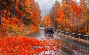 Picture autumn, beautiful, Italy, Alps