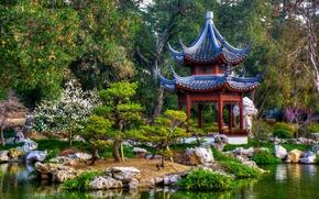 Wallpaper trees, pond, Park, CA, gazebo, Japanese garden, California, San Marino, San Marino