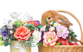Picture basket, decoration, bunny, Easter, Easter, rabbit, happy, rabbit, spring, flowers, eggs, flowers
