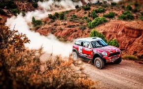 Picture Red, Mini, Dust, Sport, Speed, Race, Rally, SUV, Rally, X-Raid Team, 210, MINI Cooper, X-Raid, …