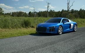 Picture Audi, Blue, V10