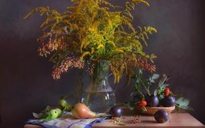 Picture autumn, bouquet, briar, still life, plum, pear