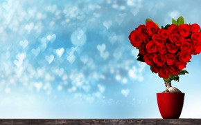Picture flowers, design, background, heart, plant, roses, bouquet, hearts, red, pot, Valentine's day
