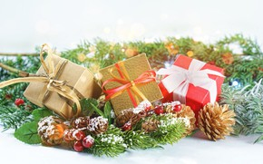 Picture holiday, new year, spruce, gifts, bow