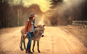 Picture road, girl, donkey