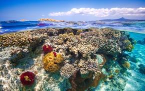 Wallpaper sea, the sky, water, clouds, the ocean, under water, reef, over the water, split