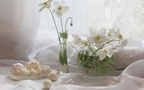 Picture flowers, plants, sweets, still life, anemones