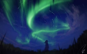 Picture girl, night, Northern lights, silhouette